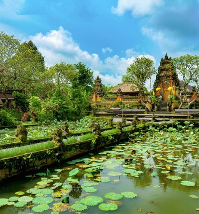 Denpasar, Bali hasta Ubud, Bali