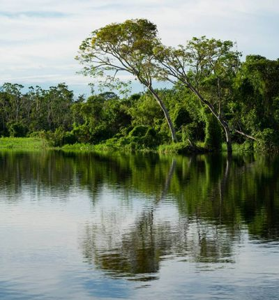da Iquitos a Pucallpa
