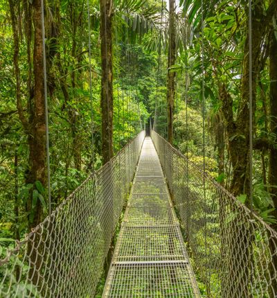 da Malpais a Monteverde